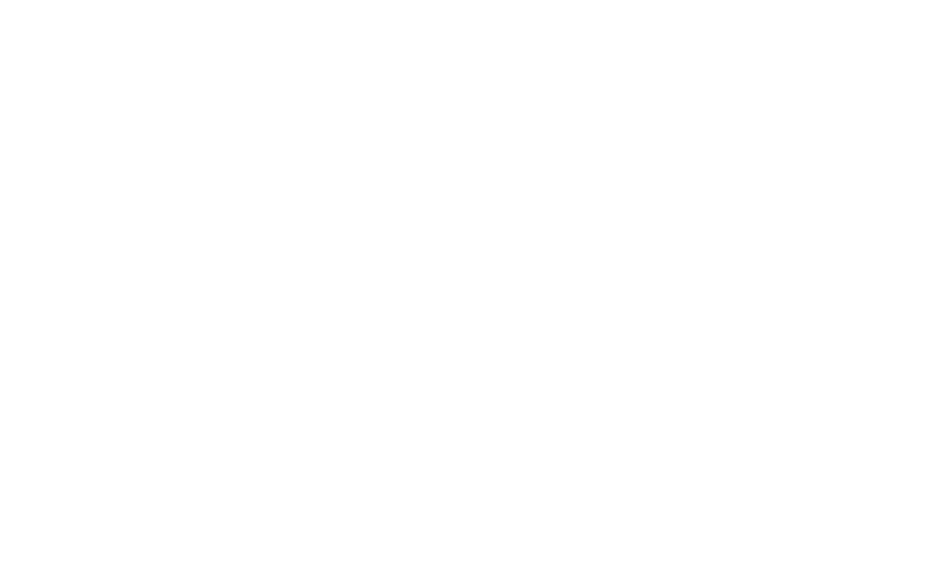 Official-Selection-NSFF_2015W