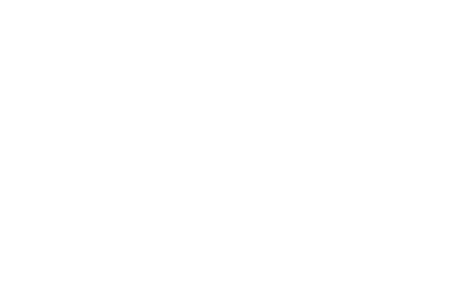 SSFF 2015 Official Selection Laurels